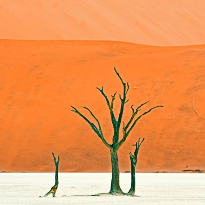 one Namib to Dali
