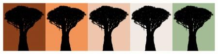 DRAGO PRINTS (diseños)
