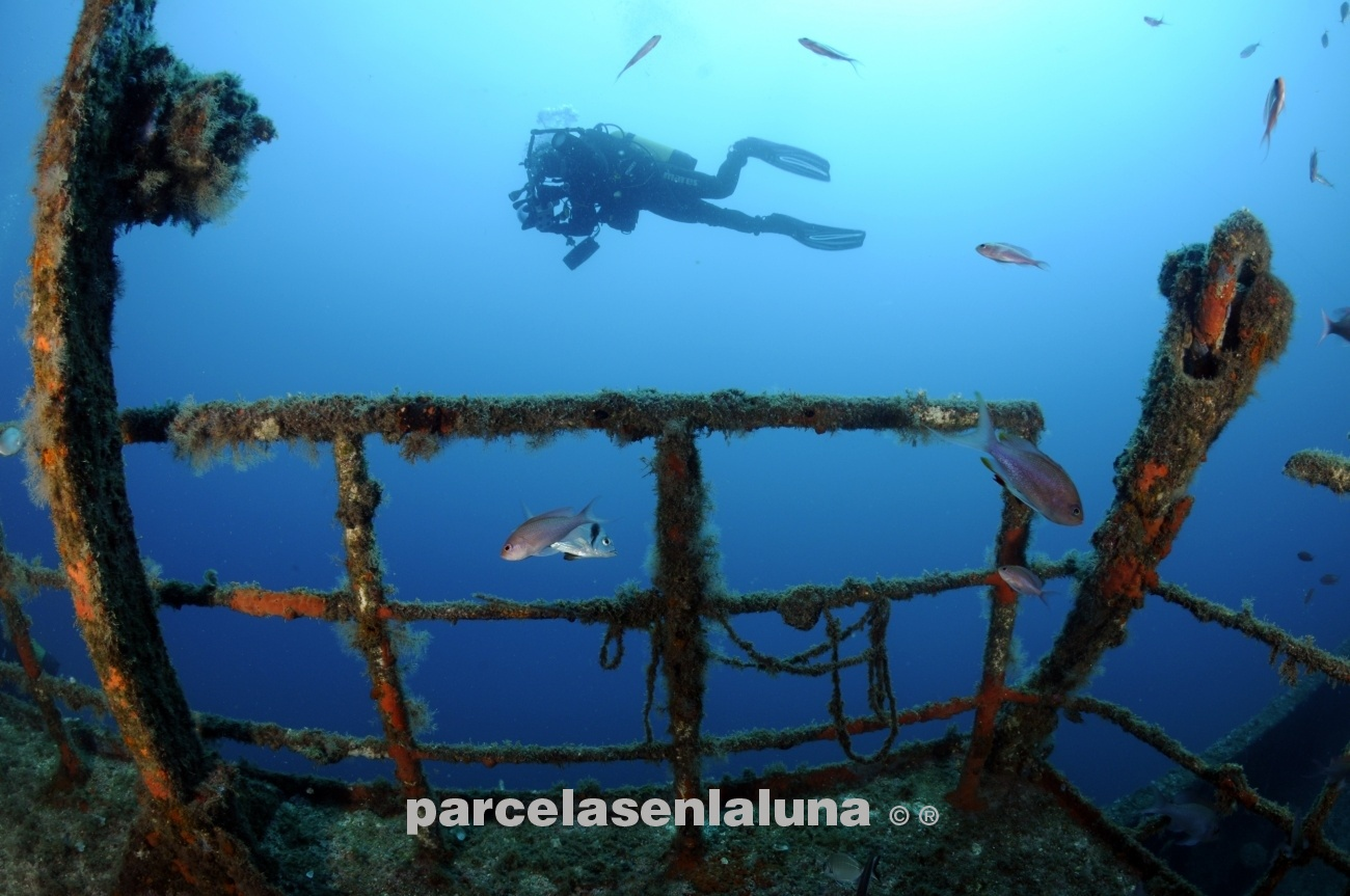 pecio boreas - el fondo del mar - fotosubpasqui-fotografía-submarina-naturaleza-fotosub-dive-buceo-viajar-trip