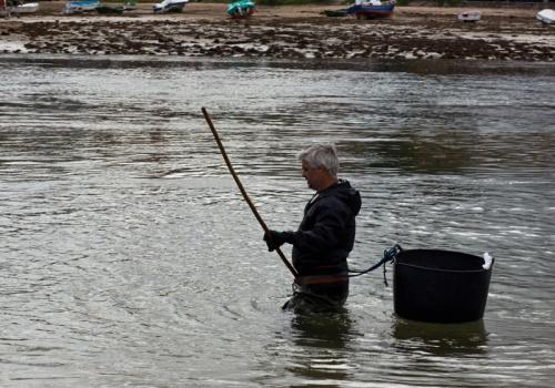 Mariscando na Ría