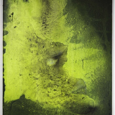Burro-lobo, 2020 / Acrylic on canvas / 41×33 cm