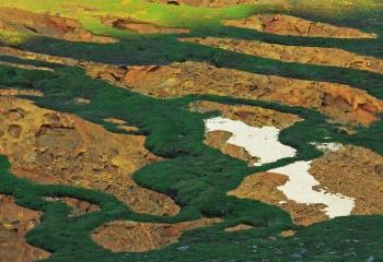 The essence of Sierra Nevada / La esencia de Sierra Nevada