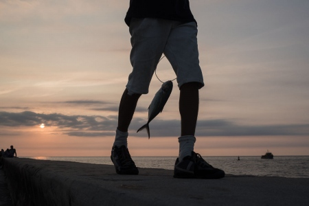 the man and the fish in the sunset of cuba