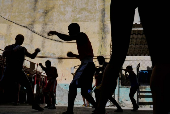 shadows of a group of cuban boxers training in Rafael Trejo boxing gym