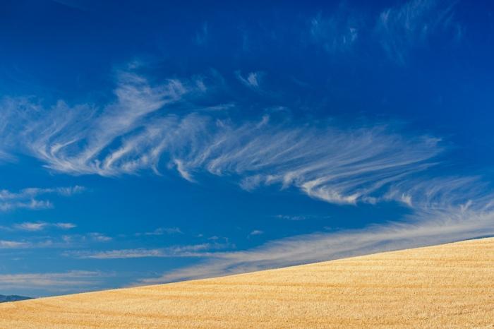 Filigrana. Nube sobre cielo azul