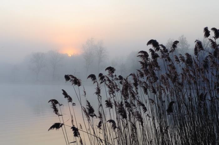Koldo Badillo · Dulce amanecer. Amanece en el Lago