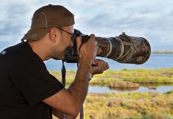 Raimon Santacatalina Fotógrafo de Naturaleza Delta Birding Delta del Ebro