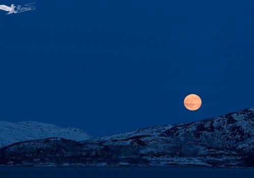 Snow Moon, Tromso, Norway