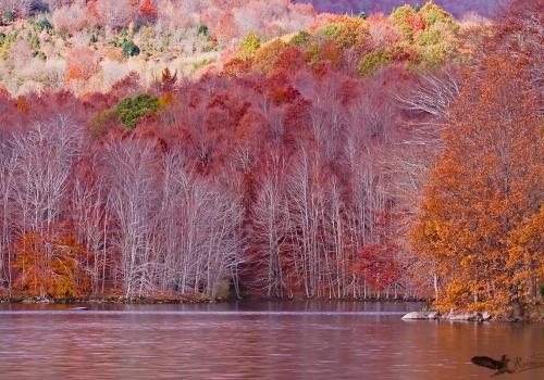 Otoño-Parque Natural del Montseny-pantano-santa-fe