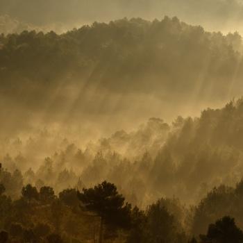 paisatge, landscape, paisaje, catalunya,