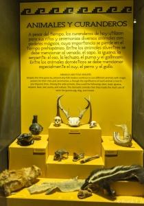 DSC_9832 el curanderismo es depositario de una tradicion milenaria de profunda motivacion religiosa y conocimientos de medicina herbolaria