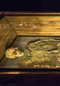DSC_9672-2 Restos óseos del Señor de Sipán