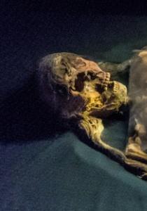 DSC_9910  Restos de La Señora de Cao, Museo de Cao,Perú