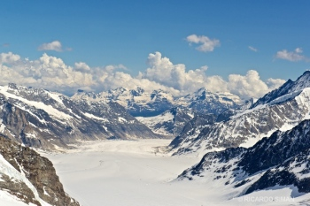 dsc 9949 Glaciar Aletsch