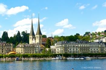 dsc 9481 Alfalfa, Suiza