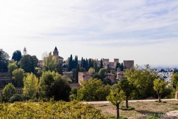 Alhambra desde los jardines de Generalife