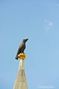 Cuervo con anillo de oro, Iglesia de Matias
