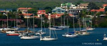Veleros en el Caribe