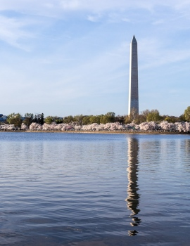 DSC_6579 Monumento a Washington