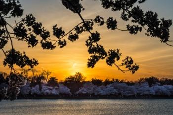 _DSC0496 Atardecer Washington Park, Cuenca Tidal Río Potomac