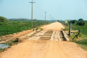 Carretera y puentes para el Pantanal