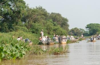 El Pantanal