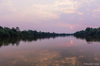 Atardecer El Pantanal