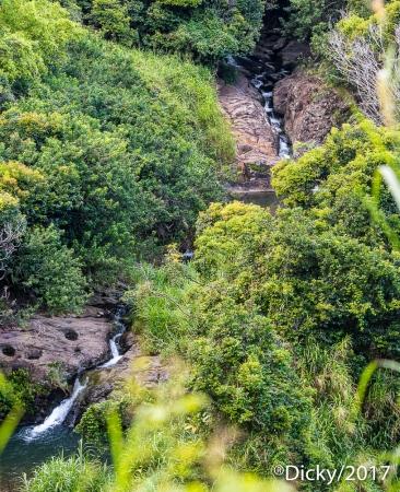 Caida de agua, Maui