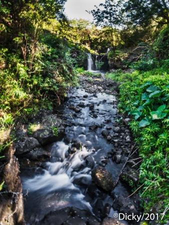 Cascada, Hana HW