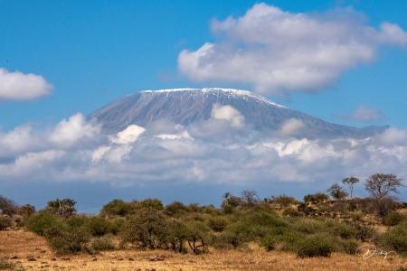 _DSC2651 Africa, Africa V, Ambosseli, Kenya, Monte Kilimanja