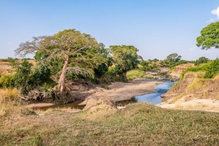 DSC_0034-2 Africa, Africa V, Kenya, Masai Mara, Paisajes.jpg