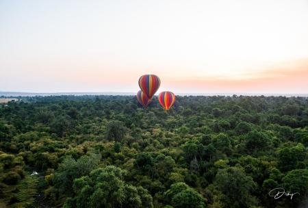 DSC_0110-2 Africa, Africa V, Kenya, Masai Mara, Paisajes, Vi