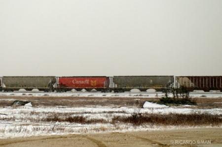 dsc 7688 Tren a Churchill, Manitoba, Canadá