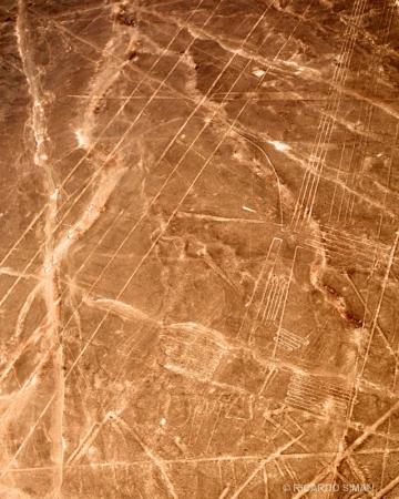 Linea de Nazca