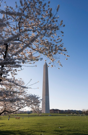 DSC_5110 Monumento a Washington