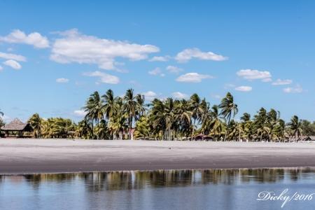 DSC_0344 Paisaje en la playa