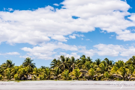 DSC_0337 Playa Costa del Sol