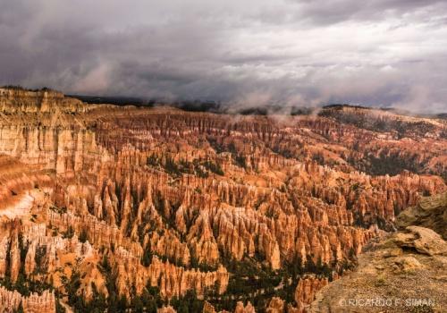 Parques Nacionales Oeste USA