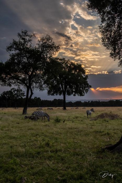 _DSC9750-HDR Africa, Africa V, Kenya, Masai Mara, Paisajes,