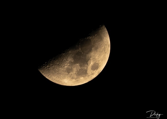 Nocturnas y Astronomía