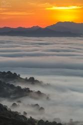 Líneas, valles, nieblas, sol.. vida.