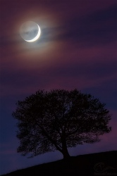Luna de otoño.
