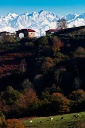 Vista desde las tierras alta de Villaviciosa, un lujo.