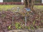 bicicleta. 2014