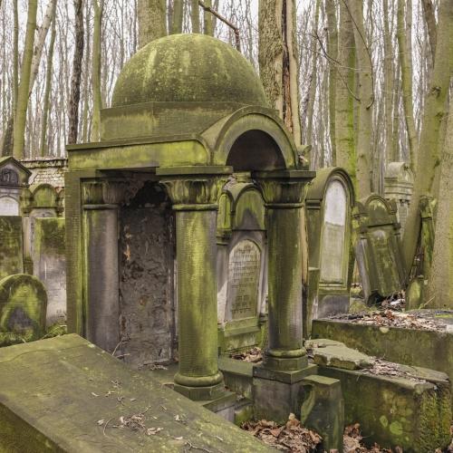 """"""" cementerio judio """". jewish cementery. Varsovia. 2016"""