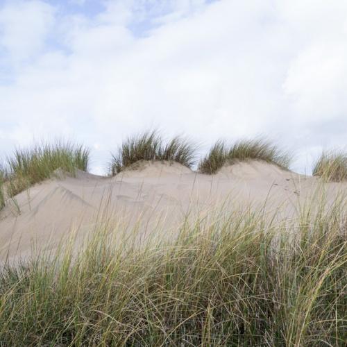 dunas en Salinas.-dunes in Salinas-. 2018