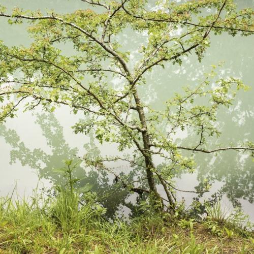 paisajes oníricos.-dream like landscapes-