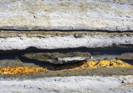 no inerte fotografías de Nuria Murillo Lara  en flysh de la Costa vasca, España
