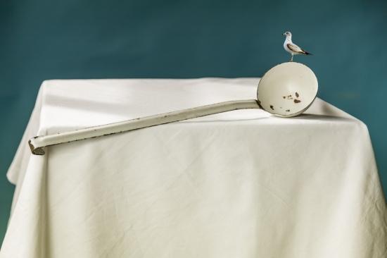 bodegon cucharon blanco con pajaro