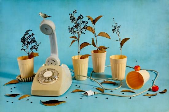 Bodegon vasos con telefono y pajaro